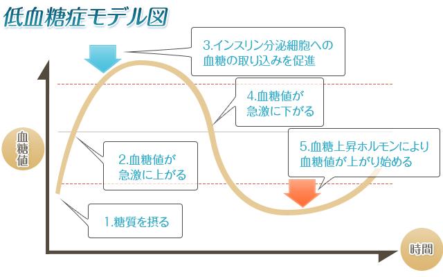 低血糖症モデル図